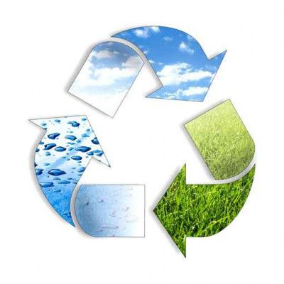 Environmental assessments and statutory compliance