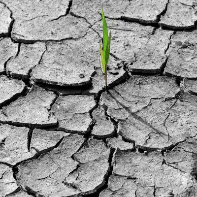 Vulnerability and adaptation to climate change